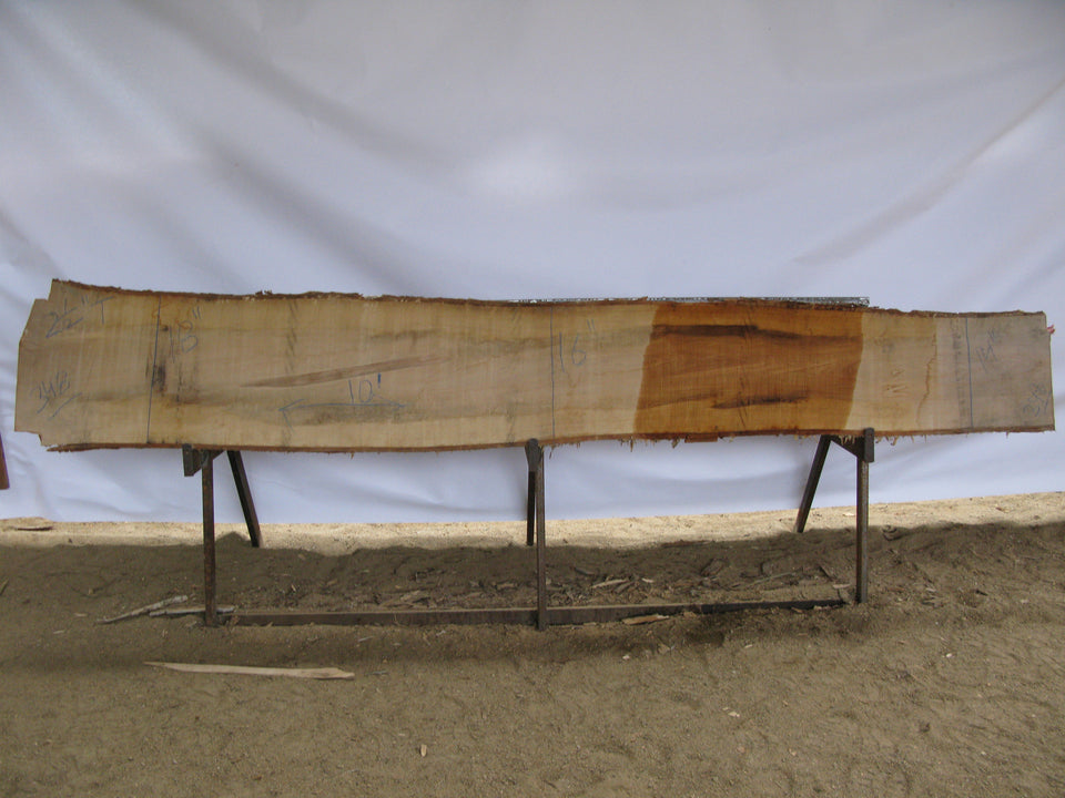 "Birch A Slab 2.5"" x 16"" x 10' BIR-348"