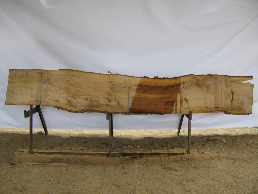"Birch B Slab 2.5"" x 17"" x 10' BIR-357"