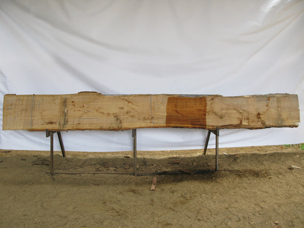 "Yellow Birch B Slab 2.25"" x 16"" x 12' YB-447"