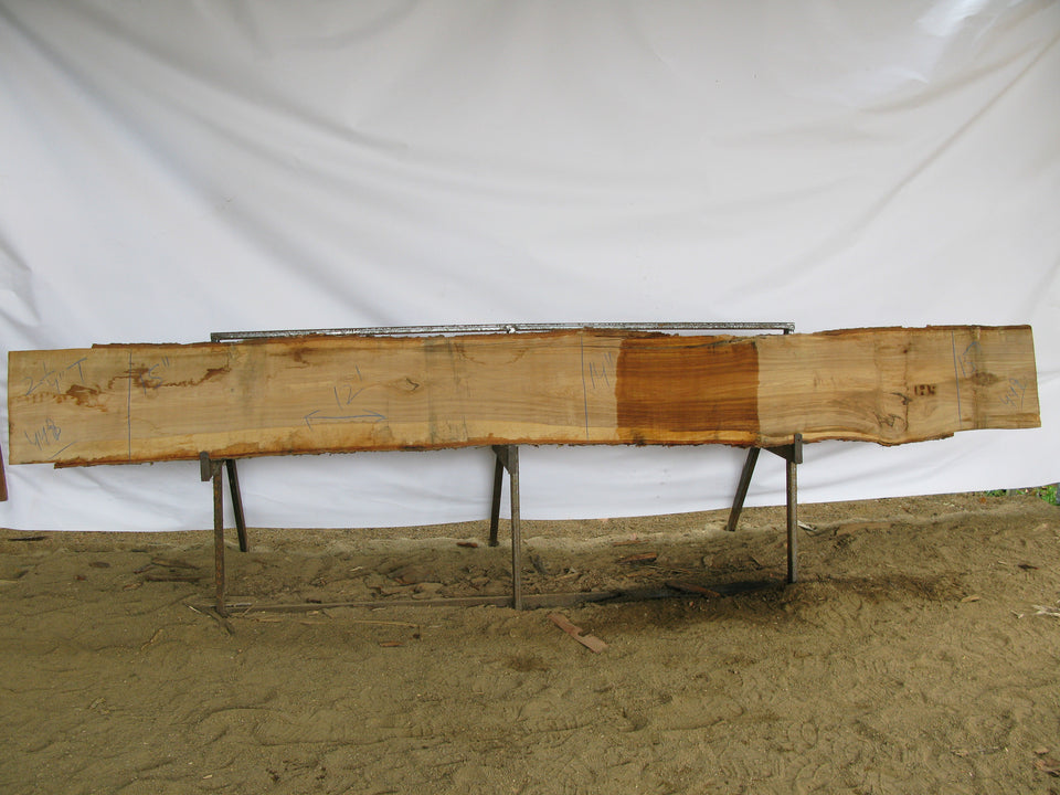 "Yellow Birch B Slab 2.25"" x 15"" x 12' YB-448"