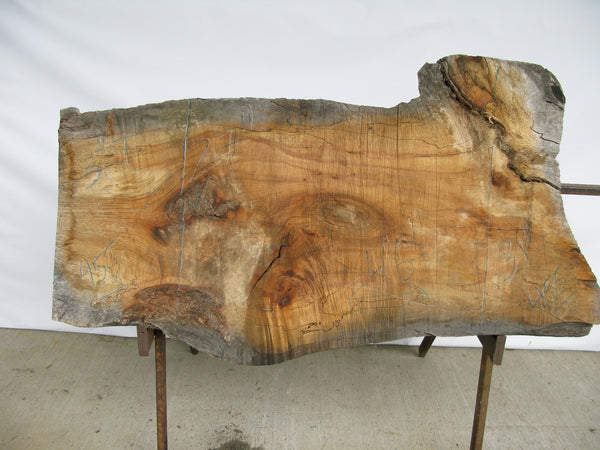 "Spalted Maple B Slab 3"" x 29"" x 4.5' SPM-455"