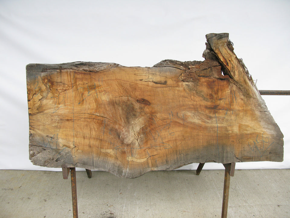 "Spalted Maple B Slab 3"" x 28"" x 4.5' SPM-456"