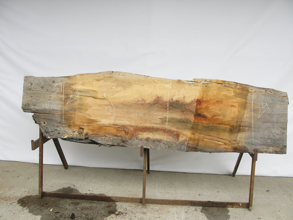 "Spalted Maple B Slab 3"" x 24"" x 8' SPM-460"