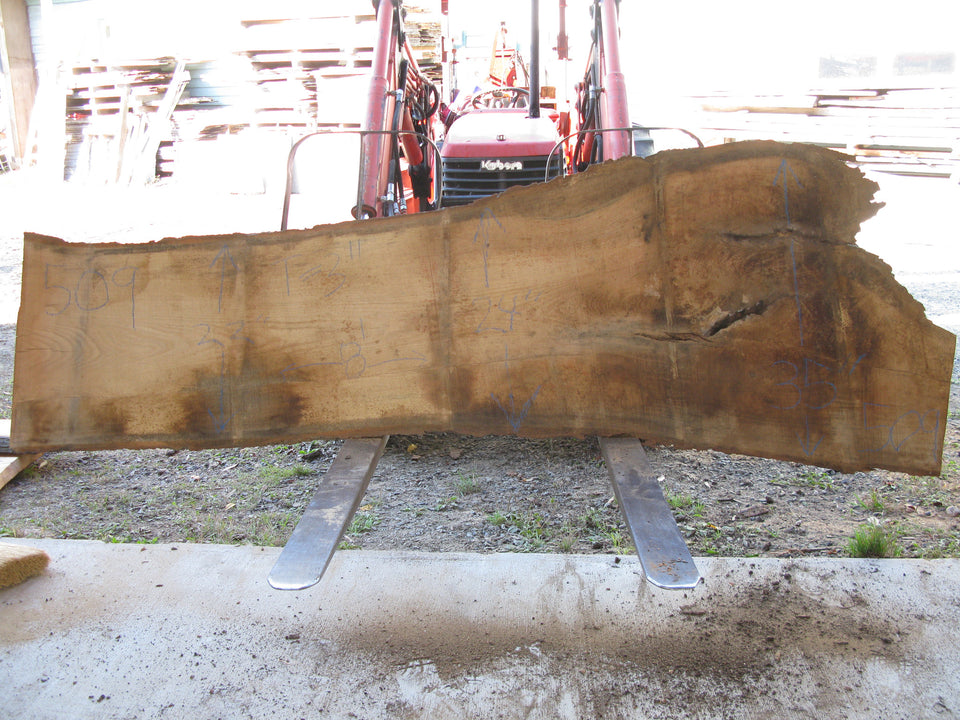 "Red Oak B Slab 3"" x 27"" x 8' RO-509"