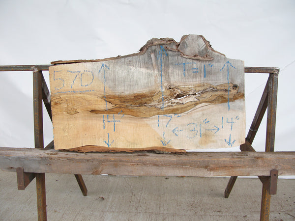 "Yellow Birch Burl Slice 1"" x 15"" x 2.5' YB-571"