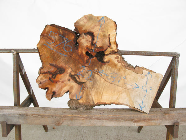 "Yellow Birch Burl Slice 1.5"" x 16"" x 2.5' YB-576"