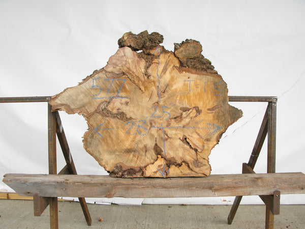"Yellow Birch Burl Slice 1.5"" x 28"" x 2' YB-577"