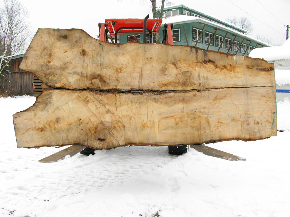 "Spalted Maple Slab B Grade 3"" x 37"" x 8' SPM-620"