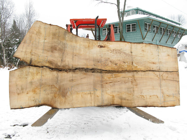 "Maple B Slab 3"" x 43"" x 8' SPM-621"