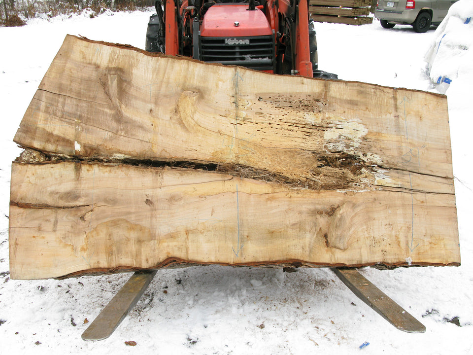 "Maple B Slab 3"" x 46"" x 8' SPM-623"