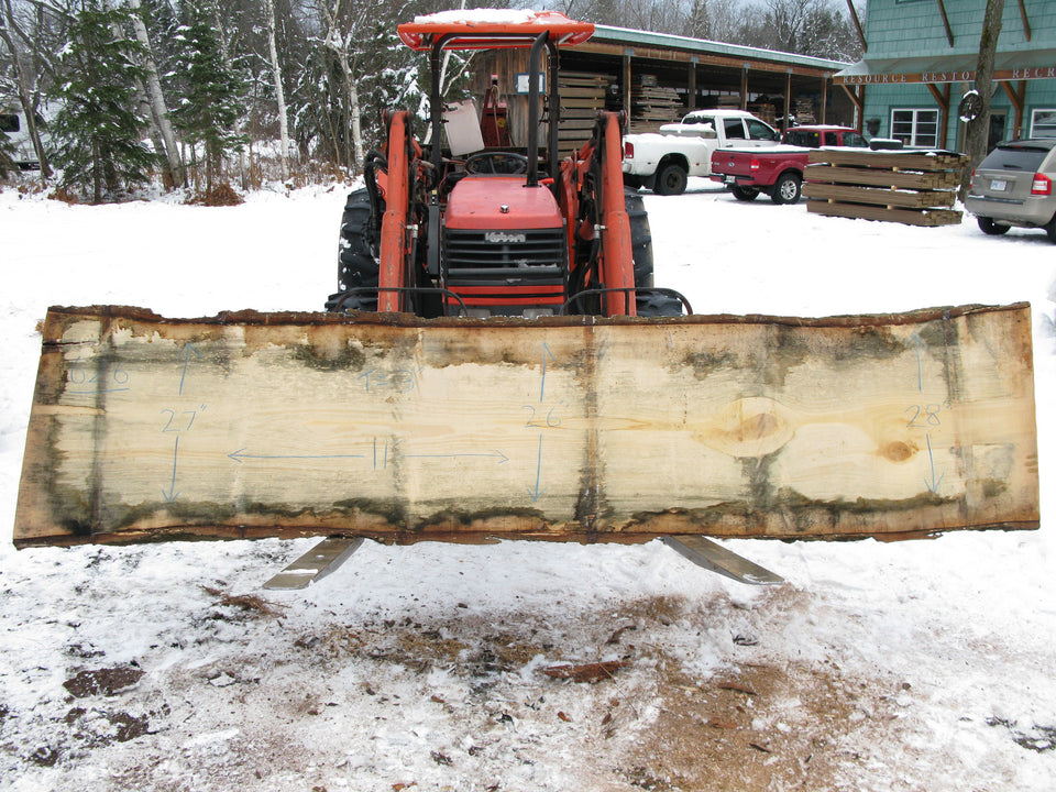 "Gingko Wood A Slab 3"" x 27"" x 11' GKO-626"