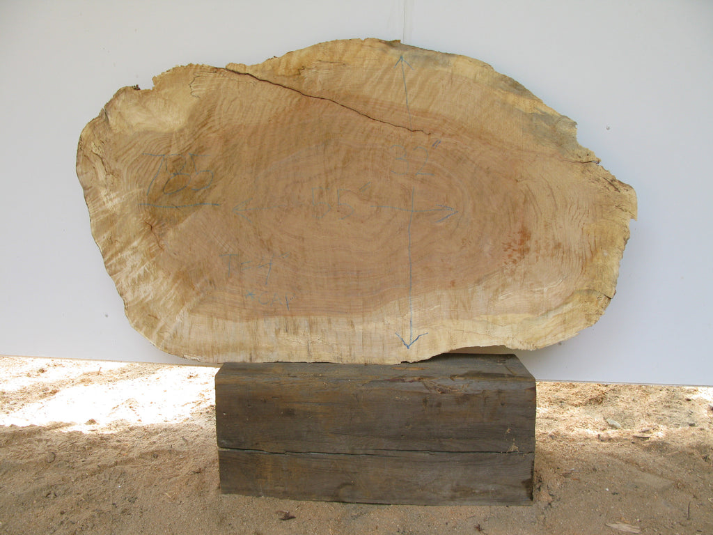 "Yellow Birch Burl Slice 4"" x 32"" x 55"" SKU785"