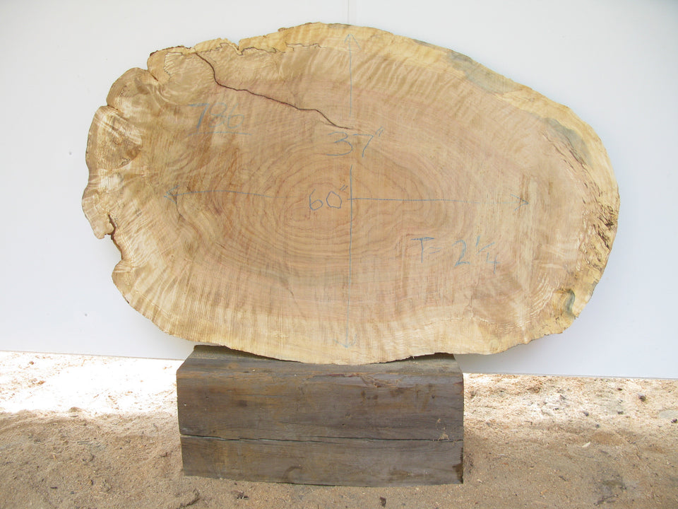 "Yellow Birch Burl Slice 2.25"" x 37"" x 60"" SKU786"