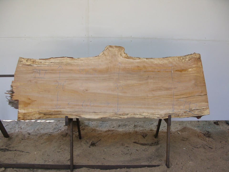 "Spalted Yellow Birch Slab 2.5"" x 26"" x 6.5' SKU799"