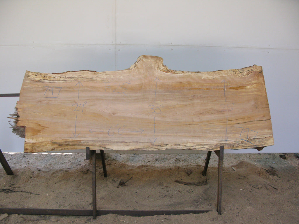 "Spalted Yellow Birch Slab 2.5"" x 22"" x 6.5' SKU800"