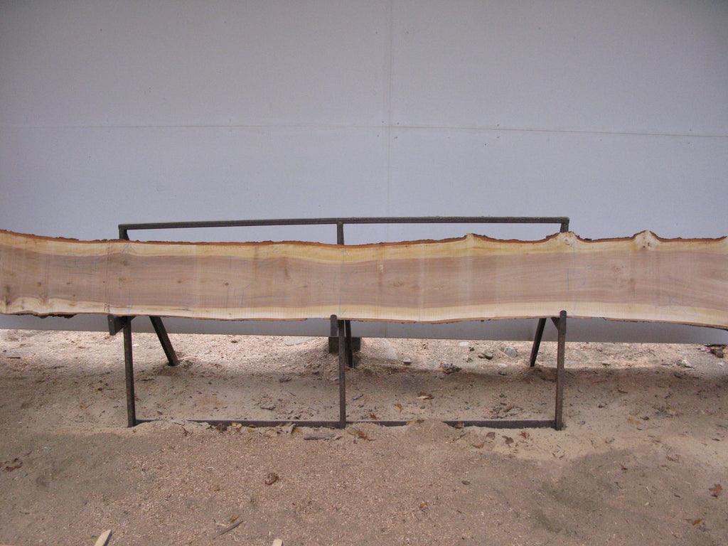 "Yellow Birch Slab with Epicormic Budding - 2"" x 13"" x 14' - YB-069"
