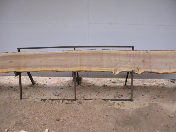 "Yellow Birch Slab with Epicormic Budding - 2"" x 13"" x 14' - YB-067"