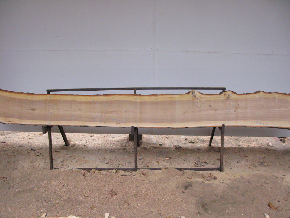 "Yellow Birch Slab with Epicormic Budding - 2"" x 14"" x 14' - YB-066"
