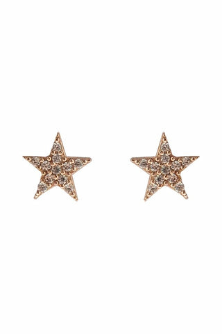 Star Kiss Ear Studs