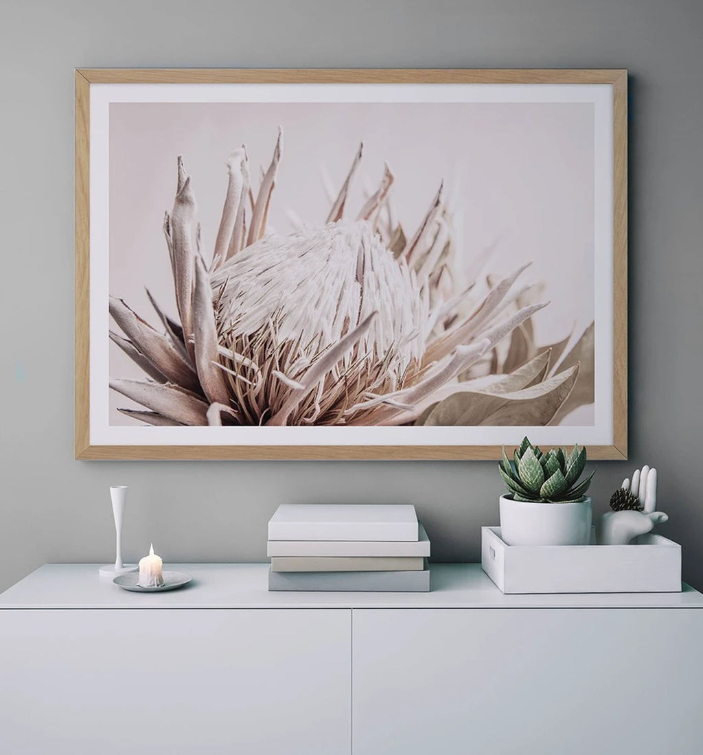 70x100 Nude Protea LS framed in Solid Timber (SAVE $50) - Olive et Oriel