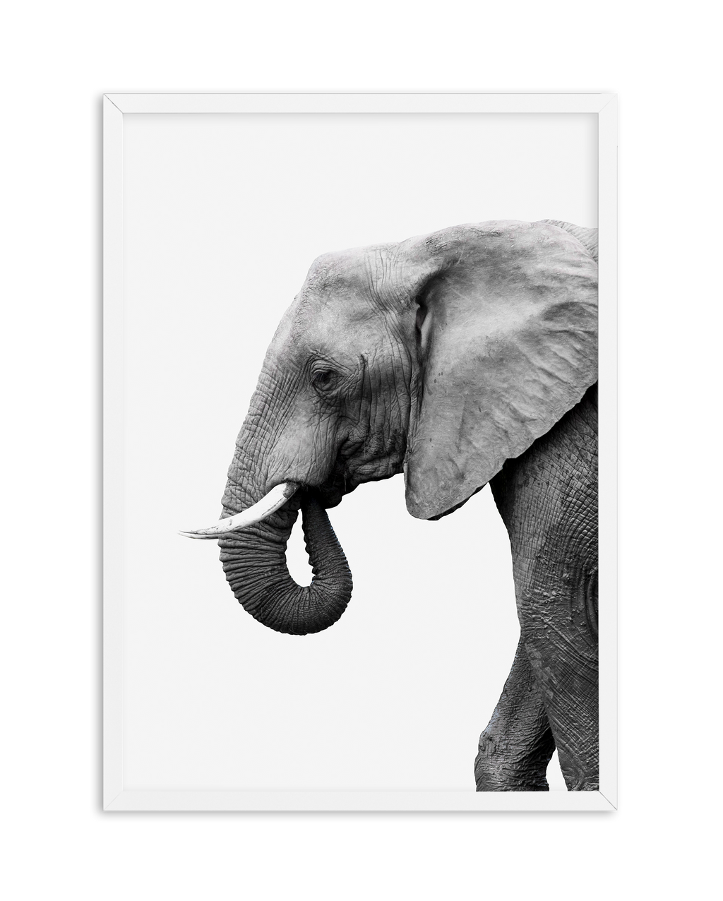 ELEPHANT NO 1 - Olive et Oriel | Shop Art Prints & Posters Online