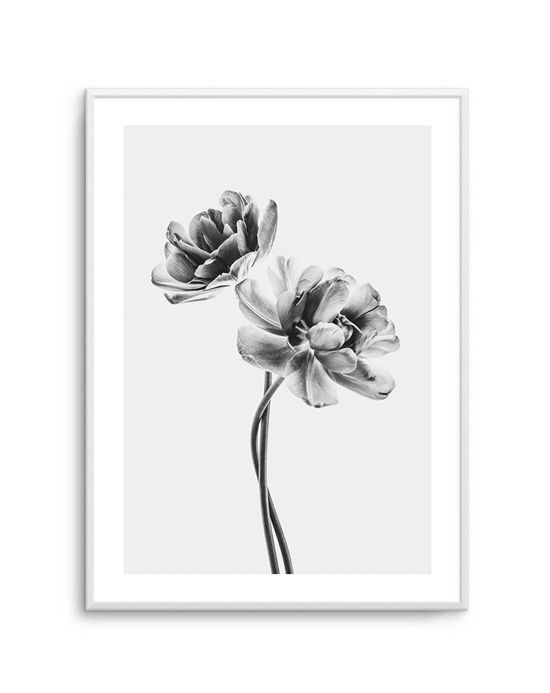 Entwined Poppy en Noir