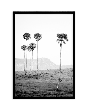 ISLAND LUXE IV - THE LOST PALMS - Olive et Oriel | Shop Art Prints & Posters Online