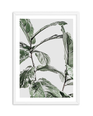 Abstract Fig I - Olive et Oriel | Shop Art Prints & Posters Online