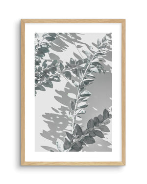 Abstract Leaves No 1 - Olive et Oriel | Shop Art Prints & Posters Online