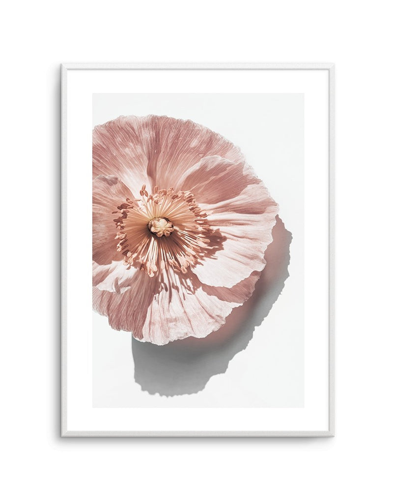 Abstract Poppies No 3 - Olive et Oriel | Shop Art Prints & Posters Online