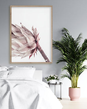 Abstract Protea No I - Olive et Oriel