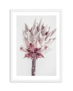 Abstract Protea No III - Olive et Oriel | Shop Art Prints & Posters Online