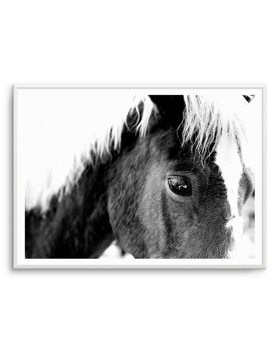 Aiko | Black & White - Olive et Oriel | Shop Art Prints & Posters Online