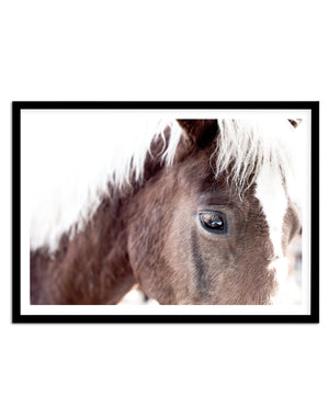 Aiko | Brown Horse - Olive et Oriel | Shop Art Prints & Posters Online