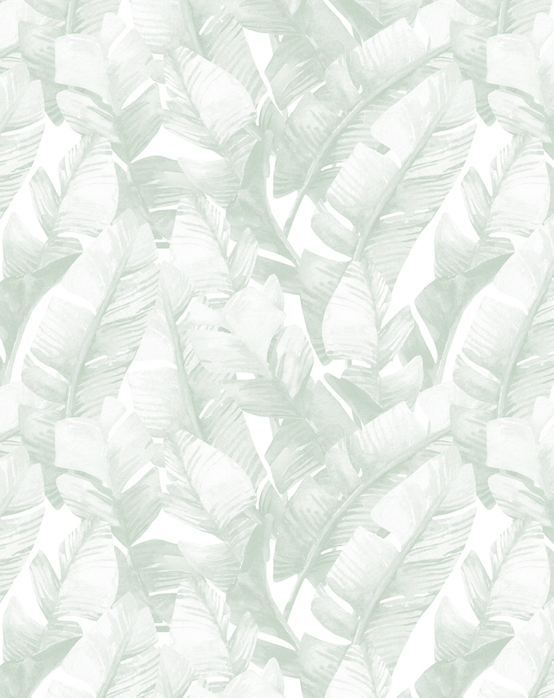 Banana Leaf Palms | Green Wallpaper