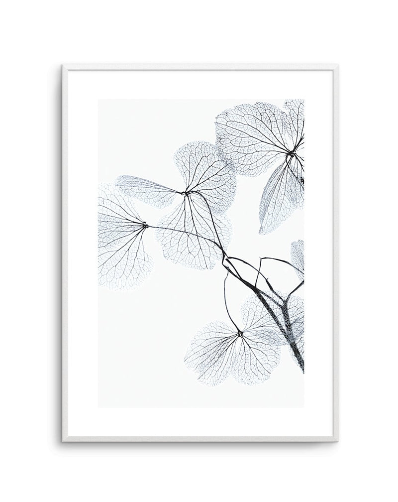 Blue Leaves No 2 - Olive et Oriel | Shop Art Prints & Posters Online