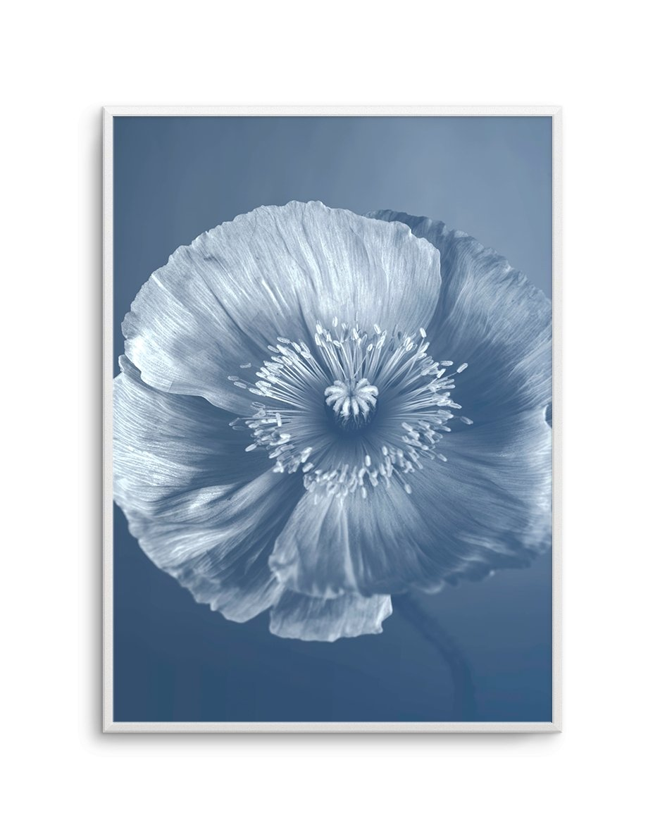 Blue Poppy No 1 - Olive et Oriel | Shop Art Prints & Posters Online