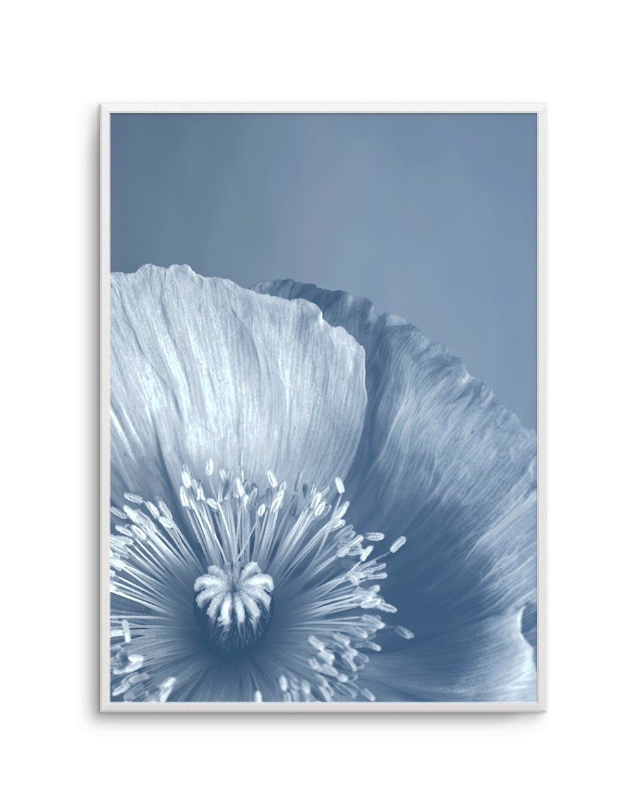 Blue Poppy No 2 - Olive et Oriel | Shop Art Prints & Posters Online