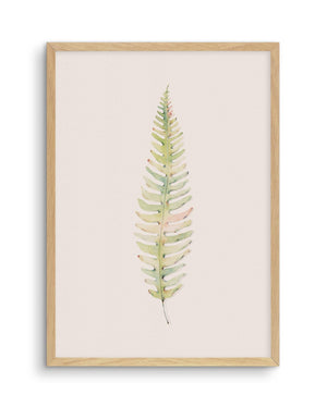 Blushing Fern I | Watercolor - Olive et Oriel
