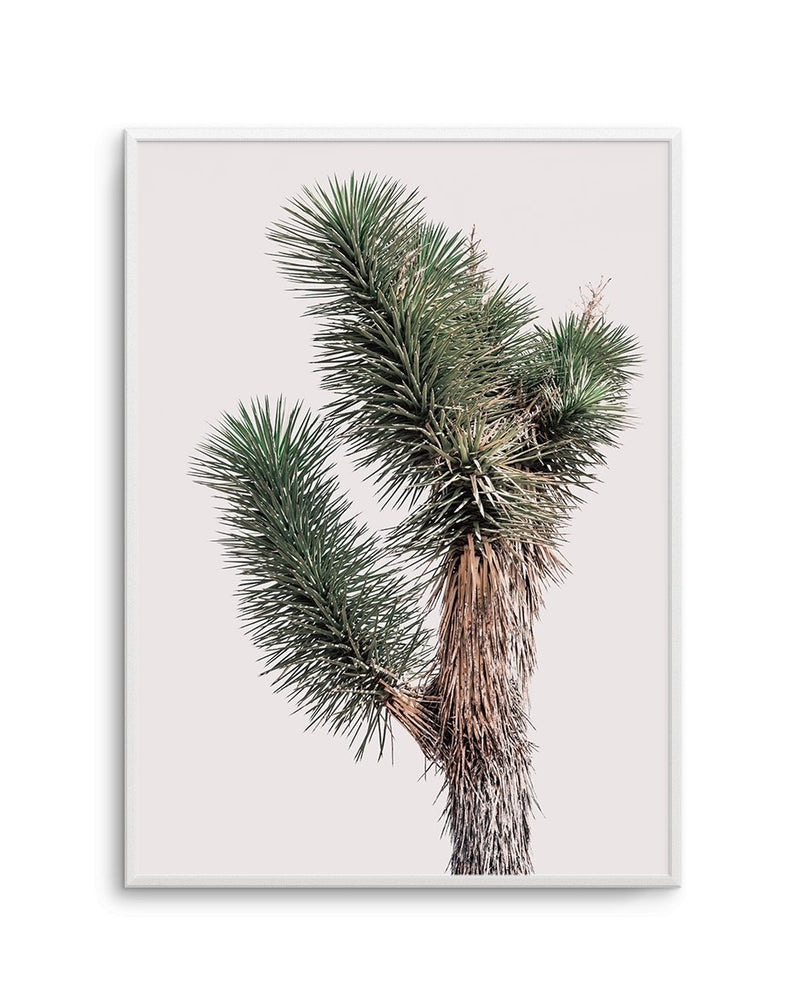 Blushing Joshua Tree No 1 - Olive et Oriel | Shop Art Prints & Posters Online