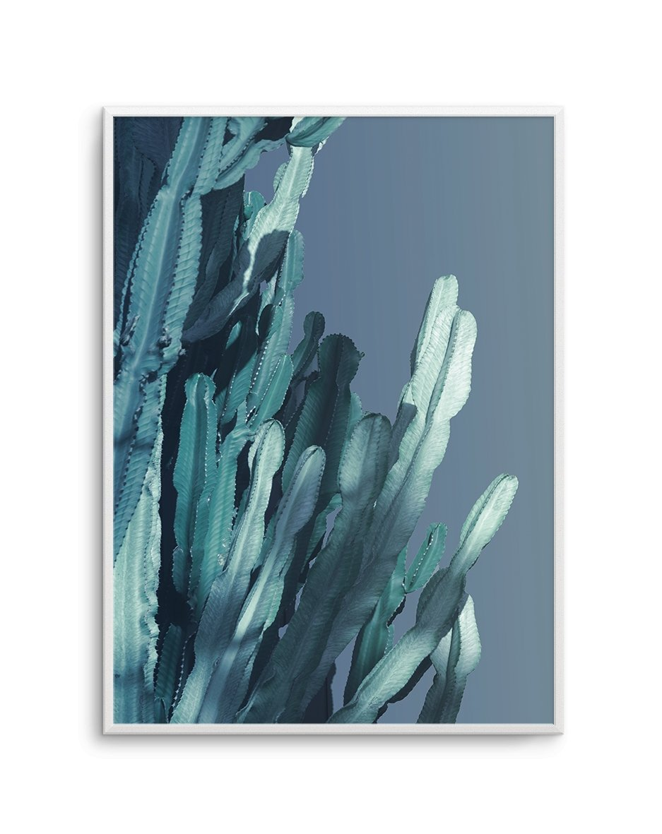Cactus In Blue No 2 - Olive et Oriel | Shop Art Prints & Posters Online