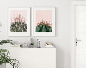 Cactus On Pink I - Olive et Oriel | Shop Art Prints & Posters Online