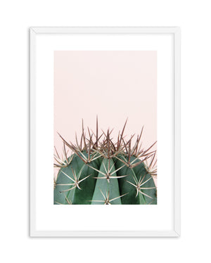 Cactus On Pink II - Olive et Oriel | Shop Art Prints & Posters Online