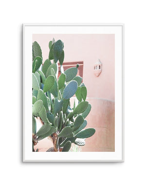 California Cactus No I - Olive et Oriel | Shop Art Prints & Posters Online