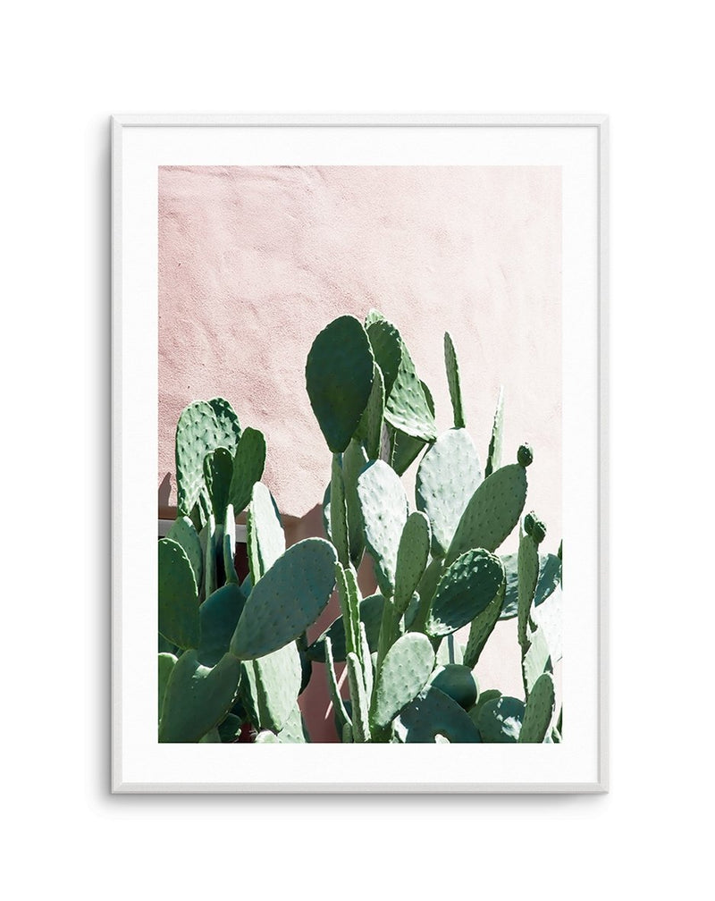 California Cactus No II - Olive et Oriel | Shop Art Prints & Posters Online