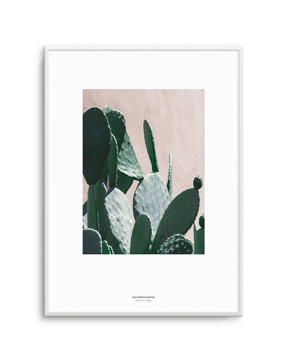 California Cactus No III - Olive et Oriel | Shop Art Prints & Posters Online