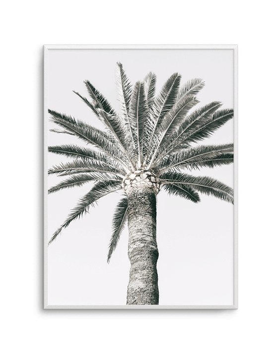 Cannes Palm PT - Olive et Oriel | Shop Art Prints & Posters Online
