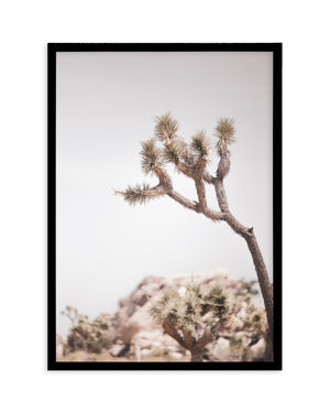 Cool Joshua Tree PT | No 1 - Olive et Oriel | Shop Art Prints & Posters Online