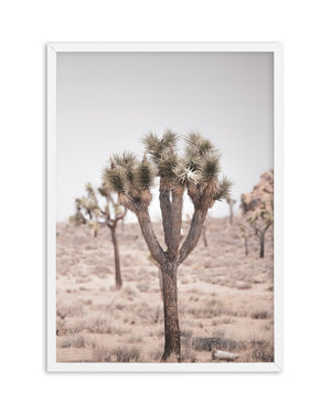Cool Joshua Tree PT | No 2 - Olive et Oriel | Shop Art Prints & Posters Online