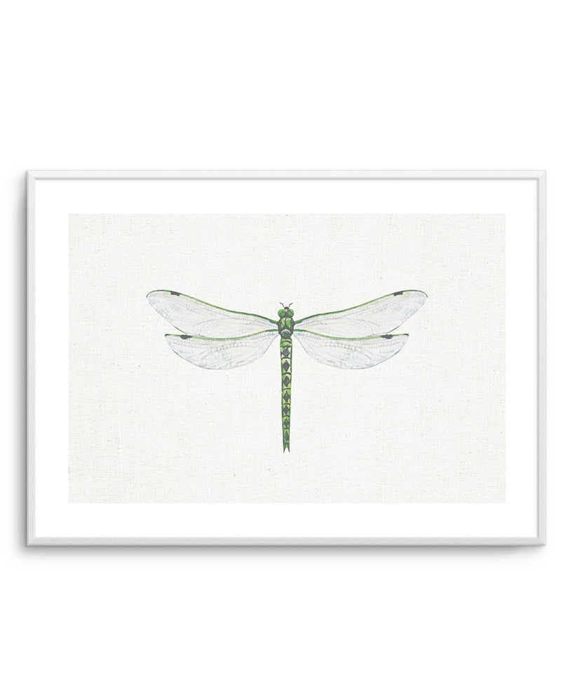 Dragonfly on Linen II - Olive et Oriel